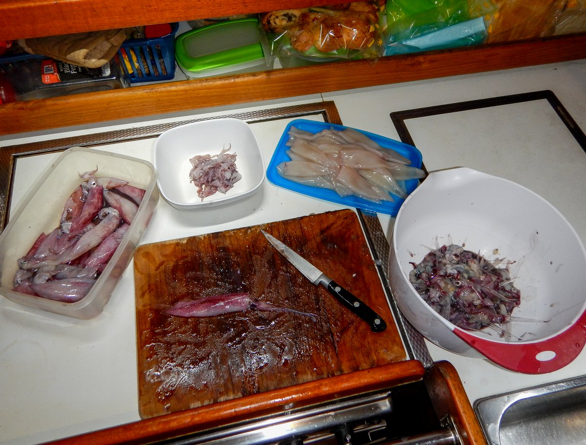 Preparing Squid